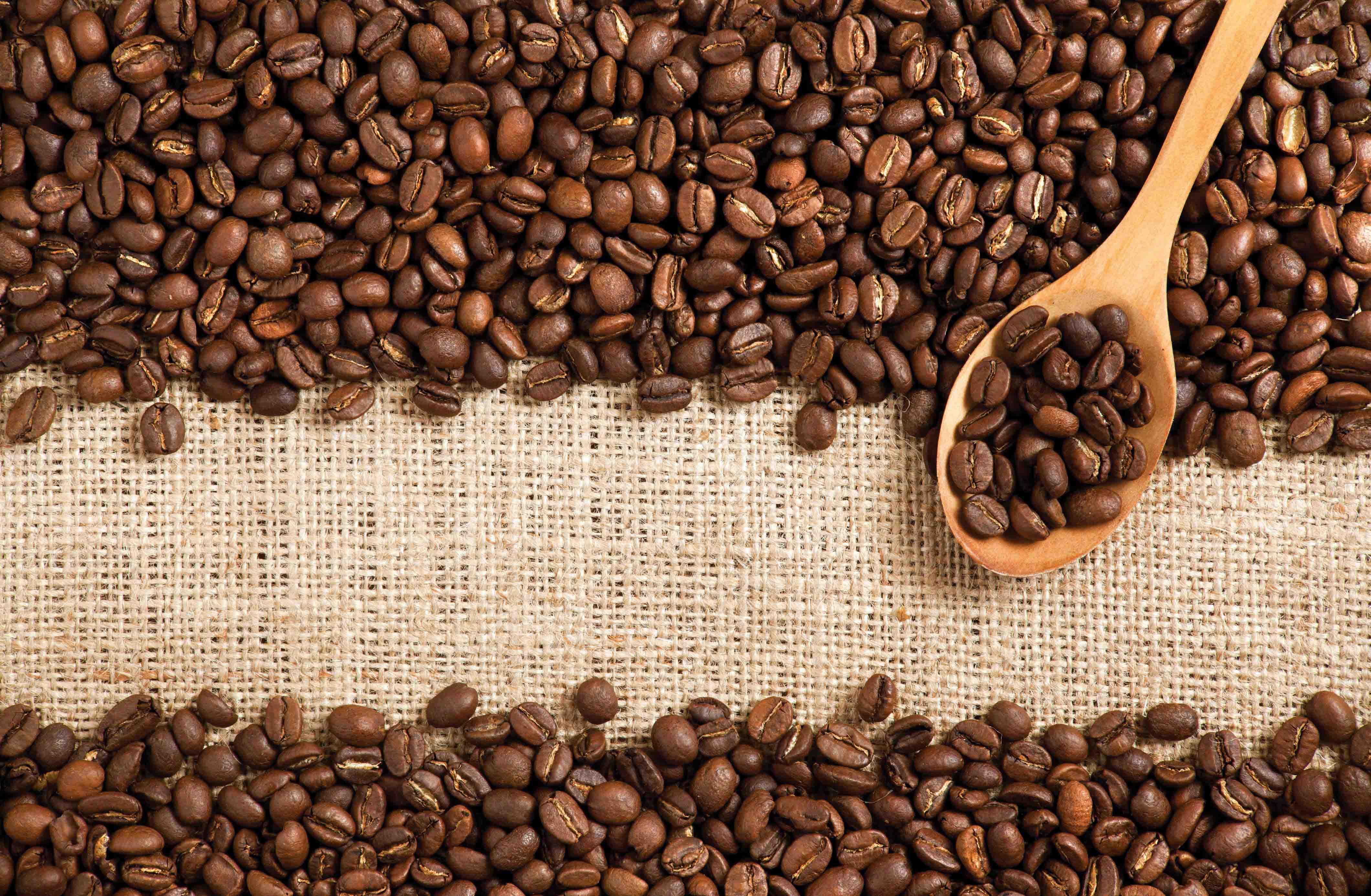 slider-Coffee-Beans-vorlage